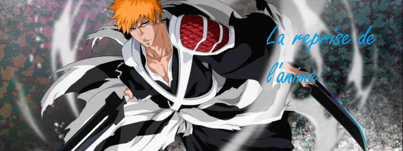 Bleach Arc Final